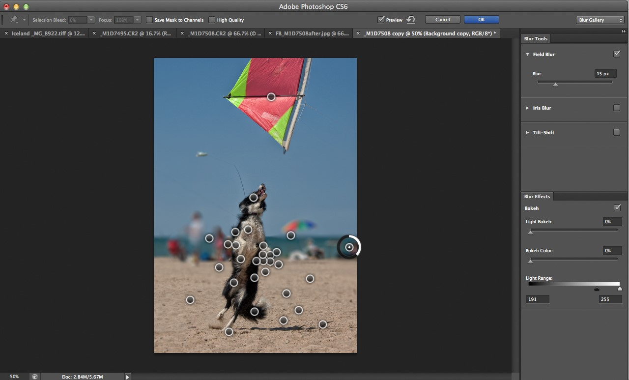 Photoshop cs6 blur gallery tutorial digital photography review you can apply as many pins at varied settings as needed to apply blur to some areas of the image while protecting areas you wish to remain sharp baditri Images