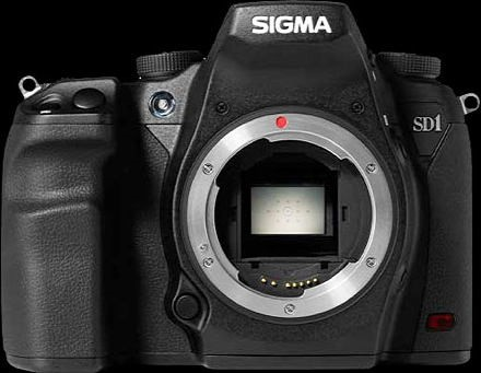 AReview of Sigma's New 100-400mm Contemporary Lens for