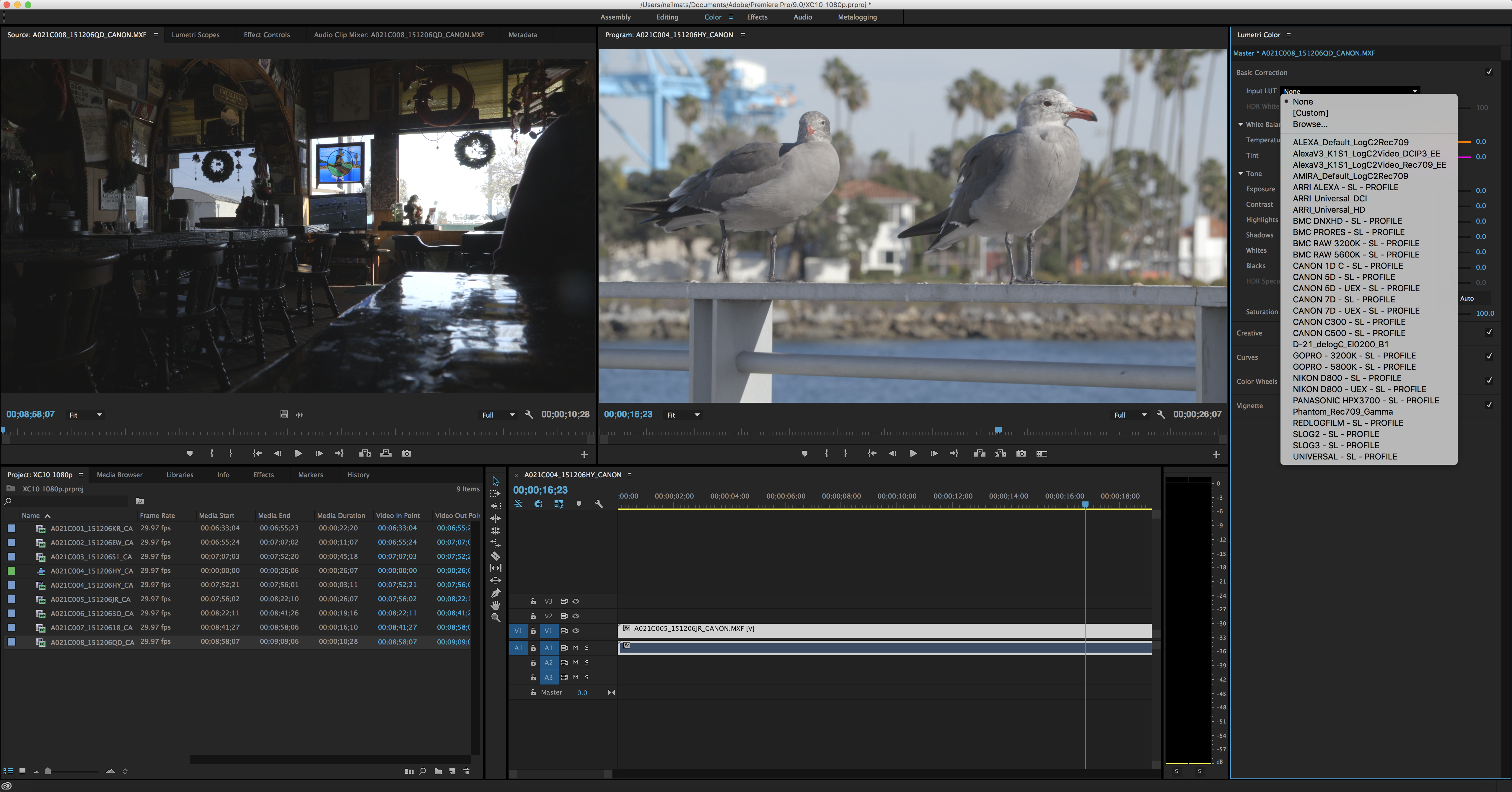 ... Pro CC, you're able to import LUTs to apply to Canon Log footage