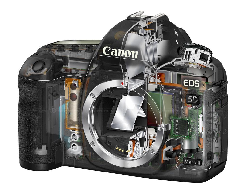 canon eos 5d mark ii in depth review digital photography review rh dpreview com canon 5d mark ii manual sensor cleaning canon 5d mark ii manual download