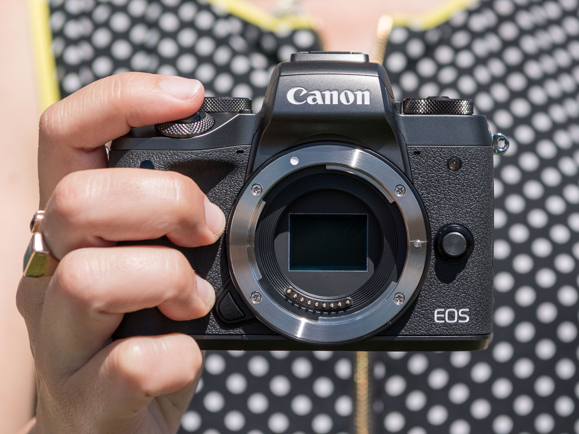 teofilo canon eos m5 what you need to know