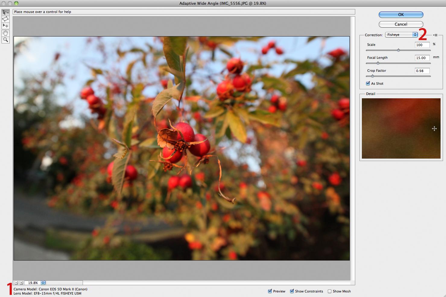 Photoshop CS6 Beta: New Features for Photographers: Digital
