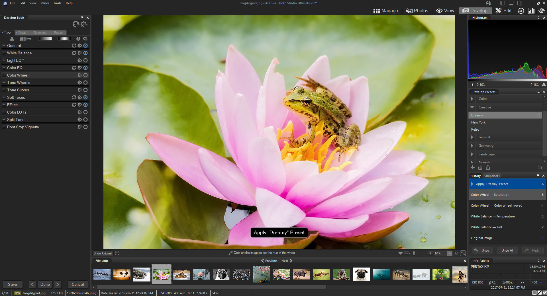 ACDSee Photo Studio Ultimate 2021 announced, promising faster performance  and new features: Digital Photography Review
