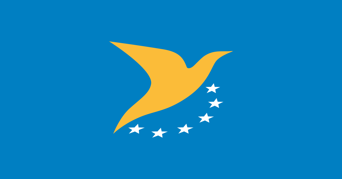European Union issues common rules on drones for more standardized regulation
