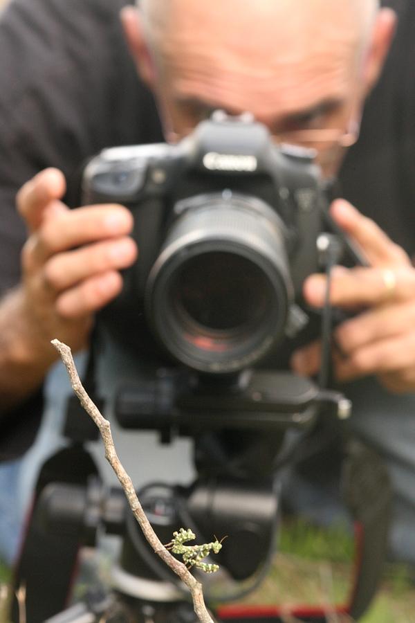Macro photography: Understanding magnification: Digital