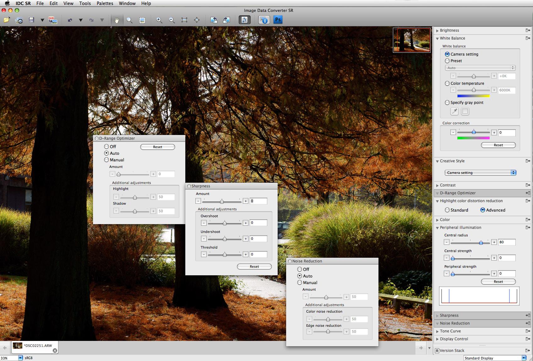 raw image converter sony