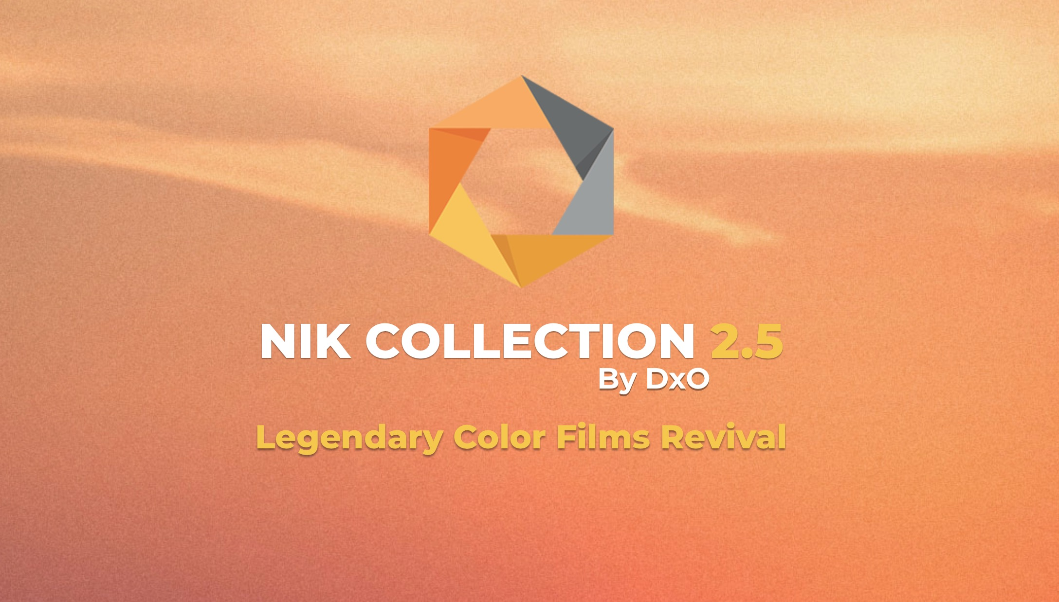 Naufragio ventana Zoológico de noche  Nik Collection 2.5 update adds new color film emulations and Affinity Photo  support: Digital Photography Review