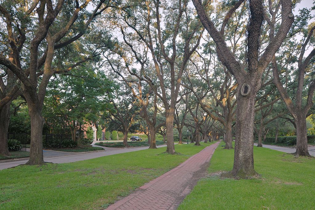I Stayed In Neighborhood To Photograph >> Houston Neighborhood Removes Photography Ban After Sidewalk